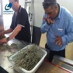 中药材烘干机#中药干燥设备#山东微波烘干机生产厂家