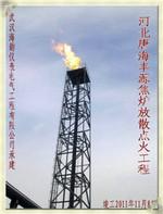[徐州東南鋼鐵]貨比三家 工業火炬點火找海韻 德國伍德新技術