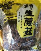 榛蘑 蘑菇 野生榛蘑  纯正 东北野生蘑菇 食用菌