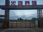 創業好項目--火雞養殖內蒙古通遼火雞養殖基地