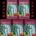 双红金五种子     双红金五西瓜种子     双红金五西瓜种子价格