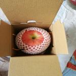 寧夏香麓蘋果圣誕果生態有機天然富硒1粒精品包裝送禮