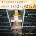 鵪鶉采食器 養殖設備 鵪鶉食槽 鵪鶉料槽 鵪鶉自動采食器