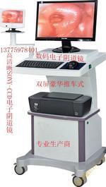 双屏电子妇科阴道镜分析系统