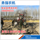 供應 高質量小型摟草機 玉米秸桿摟草機 農用牧草收割機