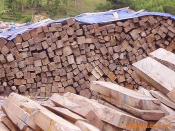 供应老挝花梨木