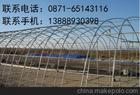 云南昆明蔬菜/溫室大棚管價格  麗江農用大棚管訂做