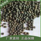 【大量供应】优质野豌豆箭舌豆 绿肥好品种 杂粮厂家直批