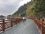 遂寧力達承接西昌邛海濕地棧橋仿木欄桿工程