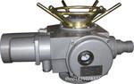 DZW45T-24推力型執行器