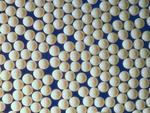 Amberlite XAD16N 羅門哈斯樹脂 大孔吸附樹脂 陶氏樹脂