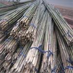供應綁扶矮砧蘋果樹苗專用的4米小竹竿